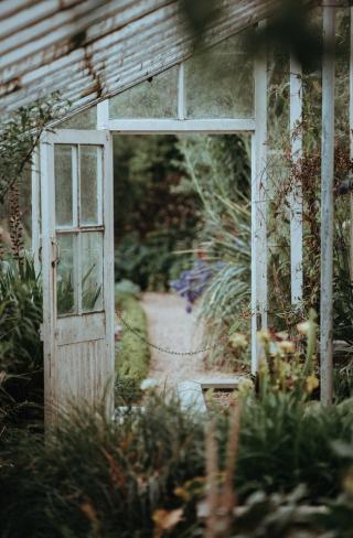 Old greenhouse open door in England 8-18