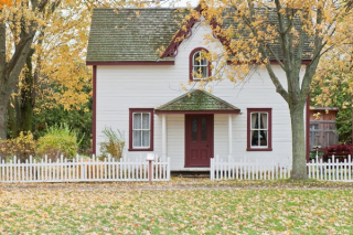 White house under maple trees 3-19