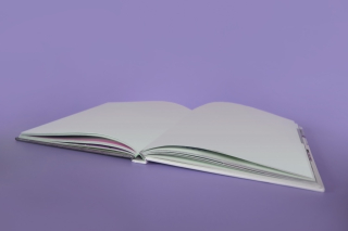 Open book with empty pages 5-19