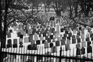 Cemetery in winter 8-18